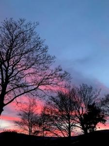 mamtor sunset